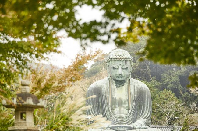 鎌倉大仏の写真1